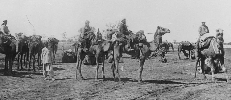 Black and white photo muslim cameleers in the desert, circa 1900