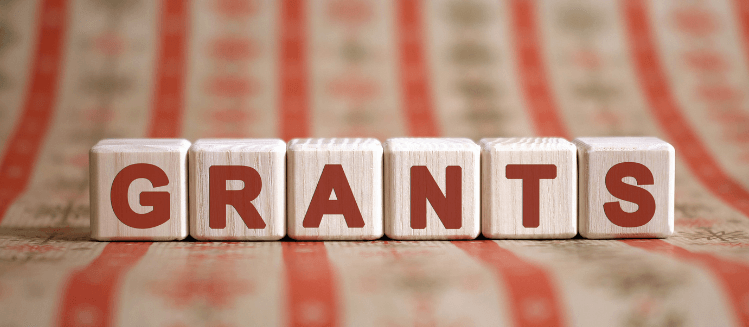 Wooden blocks spelling out the word grants in red text